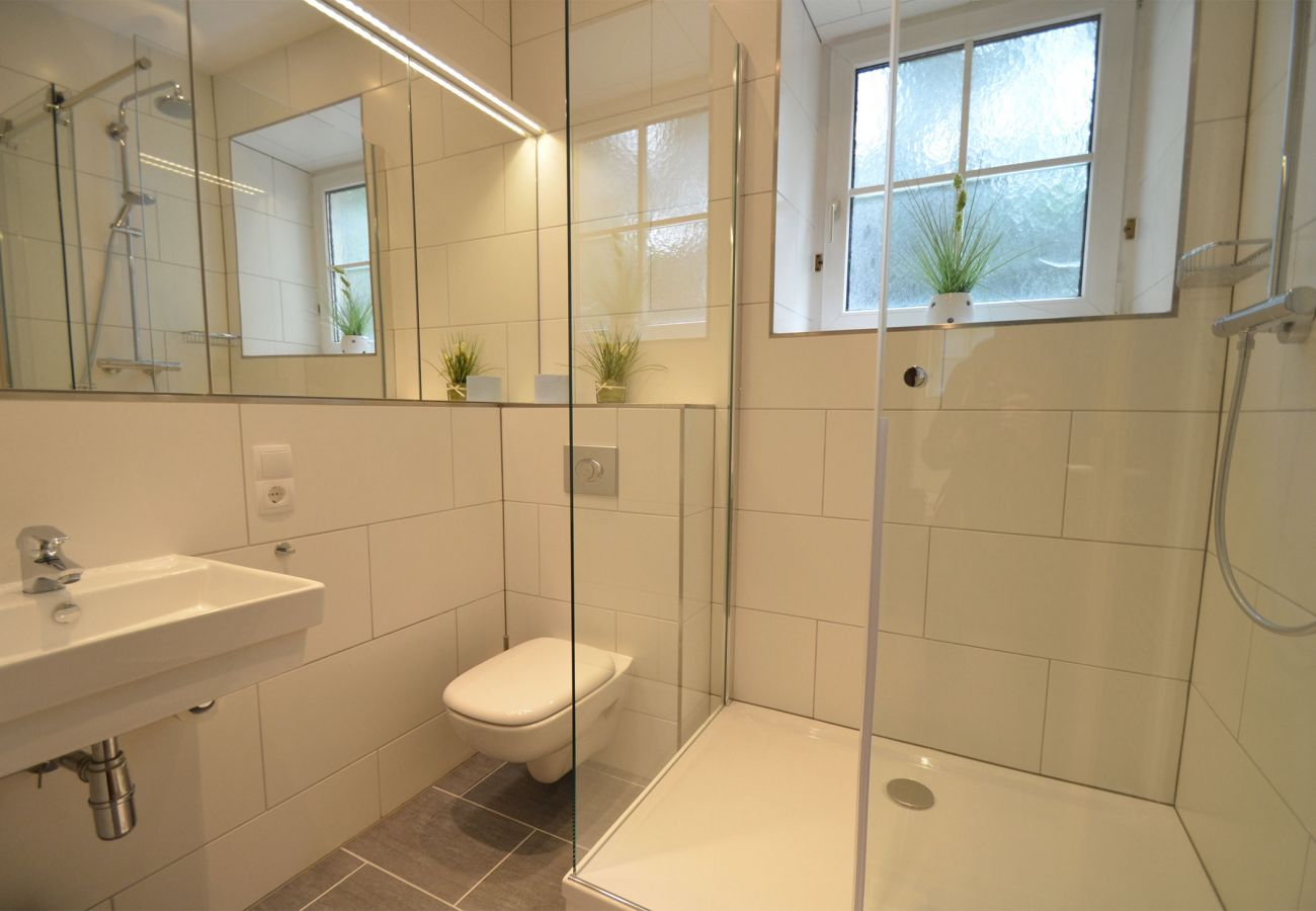 Apartment in Zell am See - Apartment CityXpress TOP 6 - Zell am See