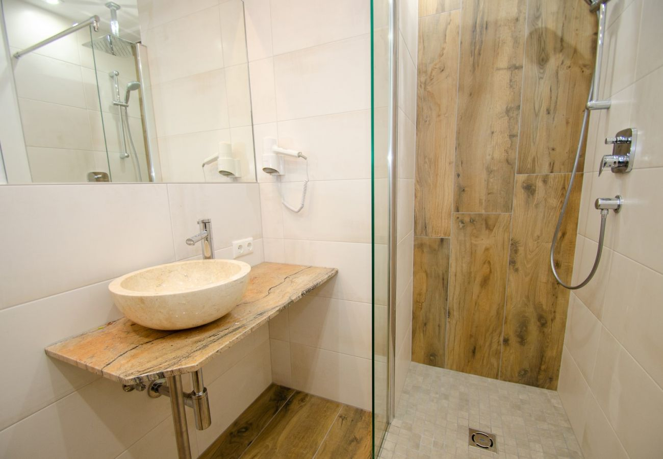 Apartment in Zell am See - Penthouse Summer & Winter Fun, roof terrace