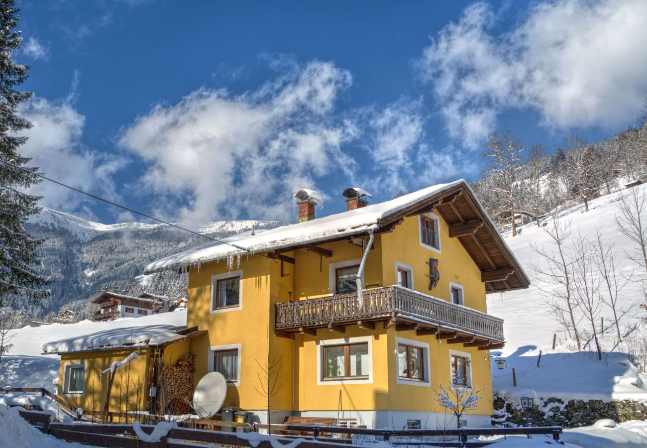 Apartment in Zell am See - BUDGET Chalet Alpine - Apartment A