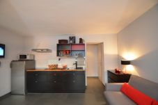 Ferienwohnung in Zell am See - 5 Seasons House Zell am See - TOP 4