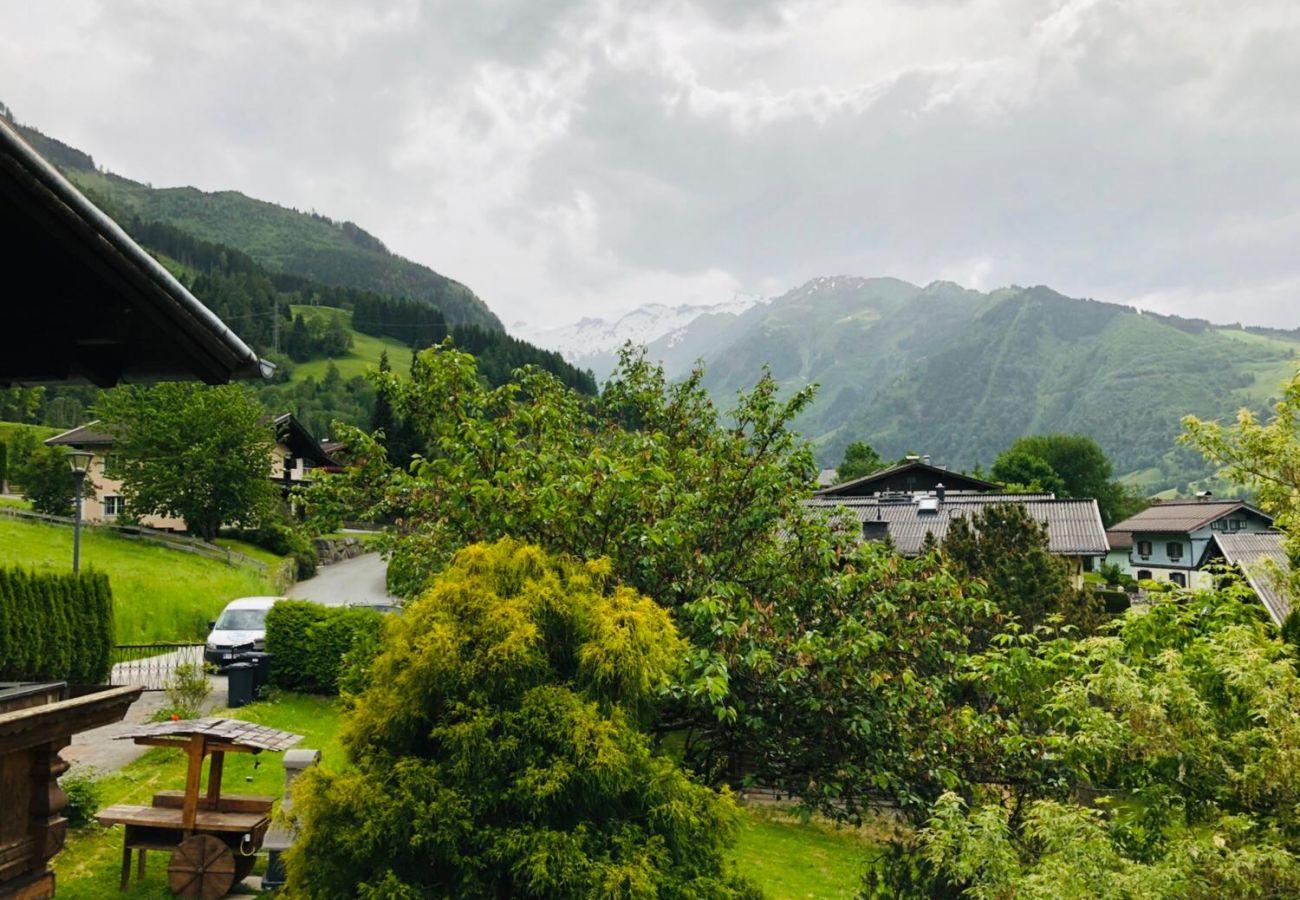 Ferienhaus in Kaprun - Holiday House Auer Kaprun-Panoramic View