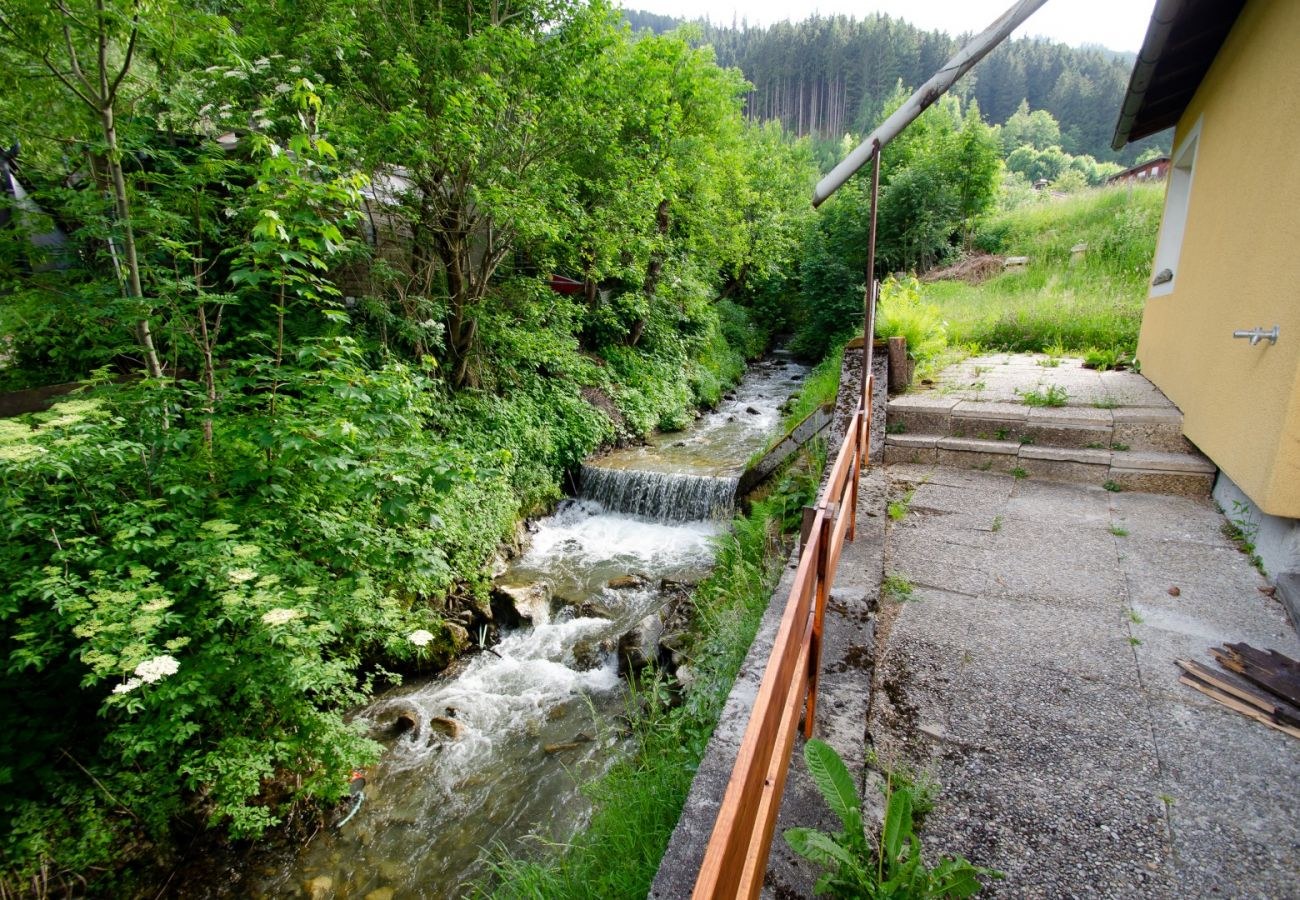 Ferienwohnung in Zell am See - BUDGET Chalet Alpine - Apartment A