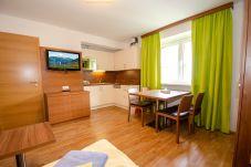 Ferienwohnung in Kaprun - Apartments EDVI B4 - balcony and glacier view